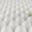 Talentsuche, aus welchem Ei schlüpft die Führungskraft?